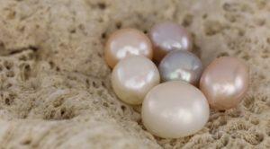 51e7eb7fad52 Perlas Barrocas - Hablemos de ellas - El mundo de las piedras preciosas